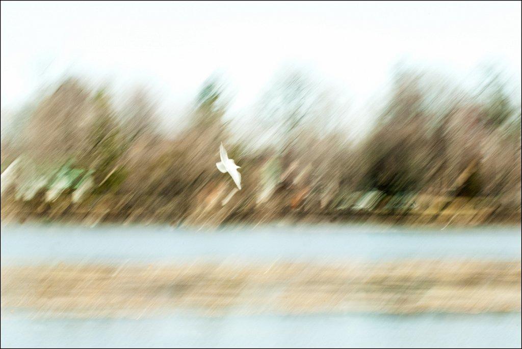 2011-04-19-10-15-10.jpg