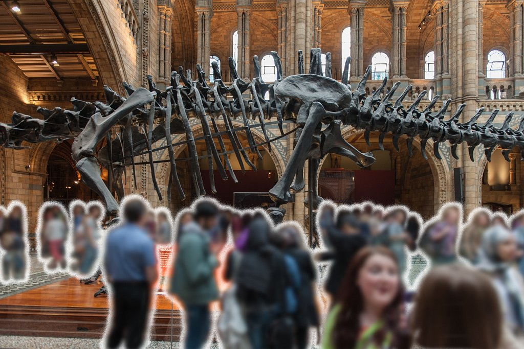 The Natural History Museum - 2013