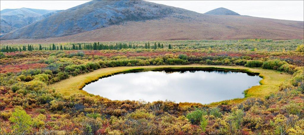 Ornamented Mirror, Yukon Territory, 2010