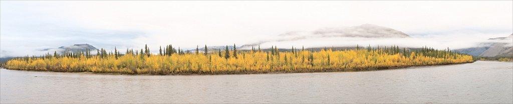 River of Aspens, Yukon Territory, 2010